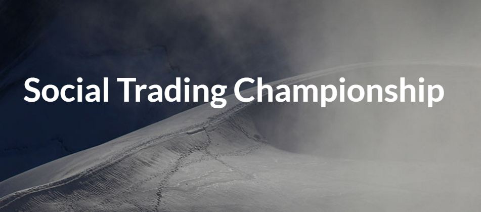 social trading championship